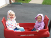 The girls getting a ride in the wagon